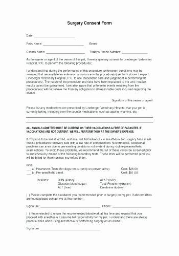 Esthetician Resume – Crazywind