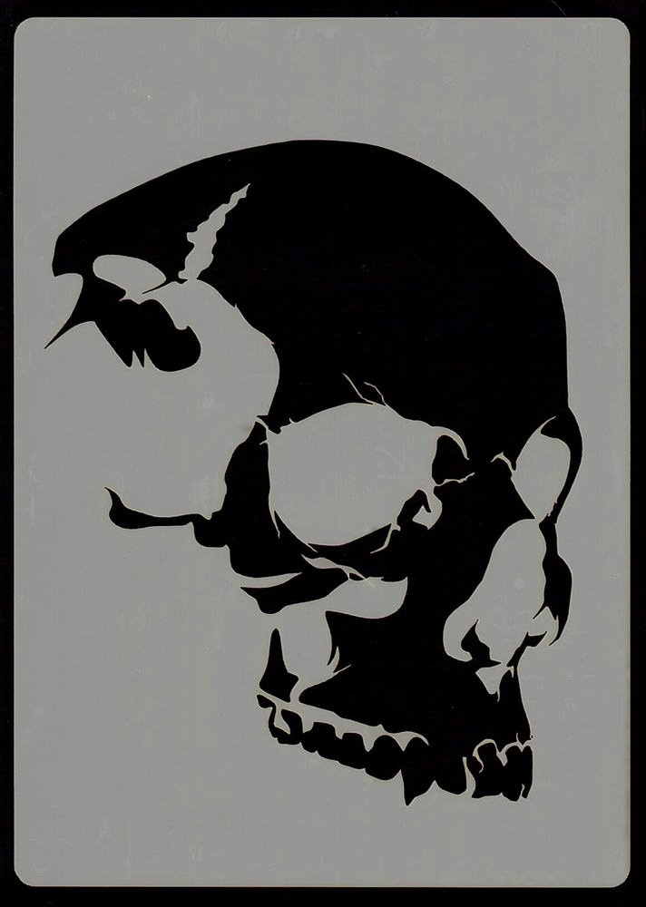 Everything Airbrush Stencils Skull Head Stencil 6