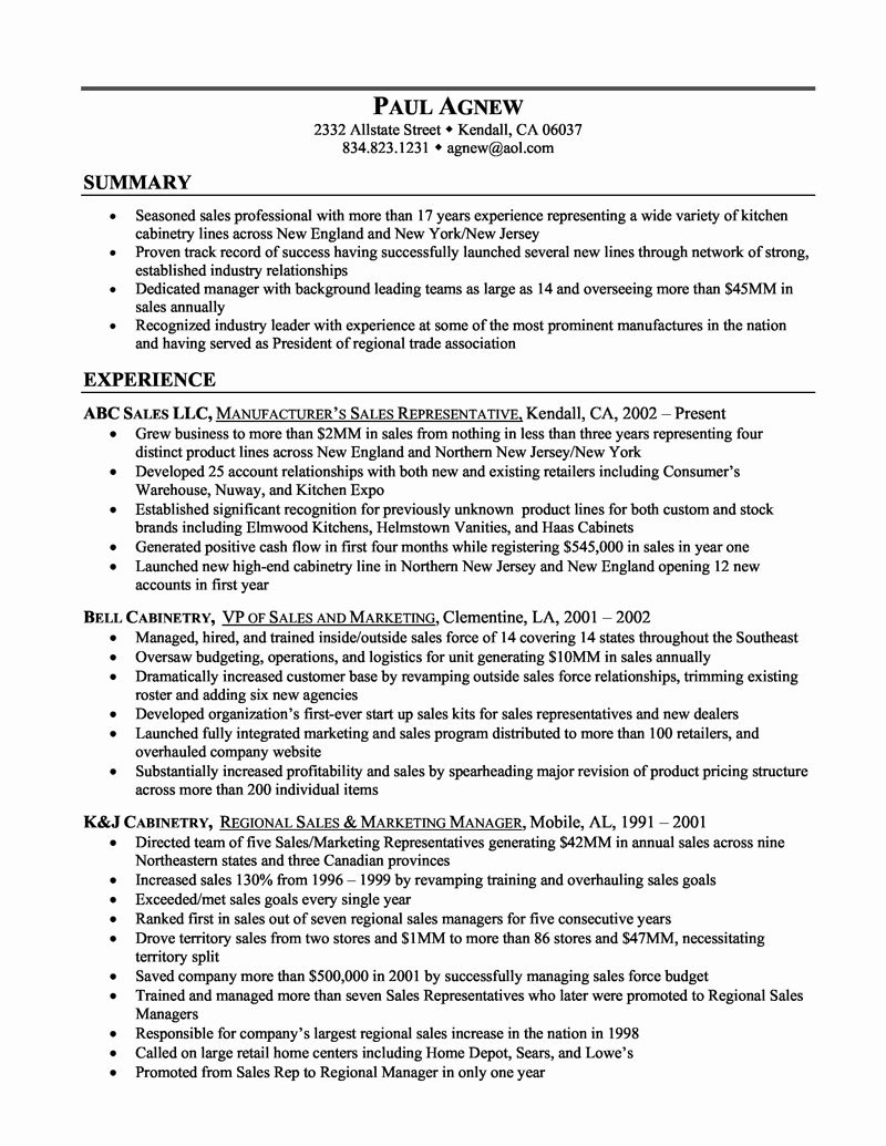 Example A Resume Summary – Perfect Resume format