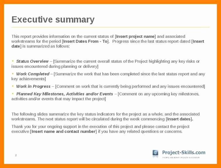Example Executive Summary Report Executive Report