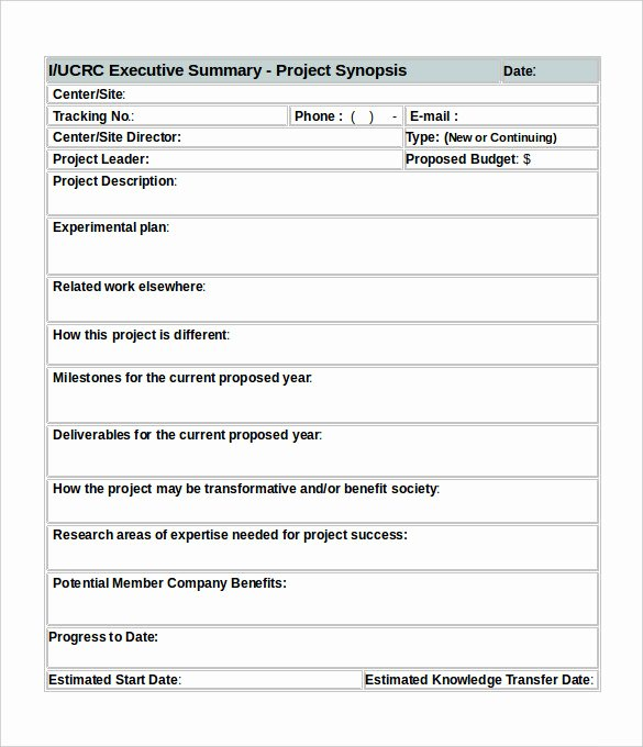 Example Of Executive Summary for A Project Report