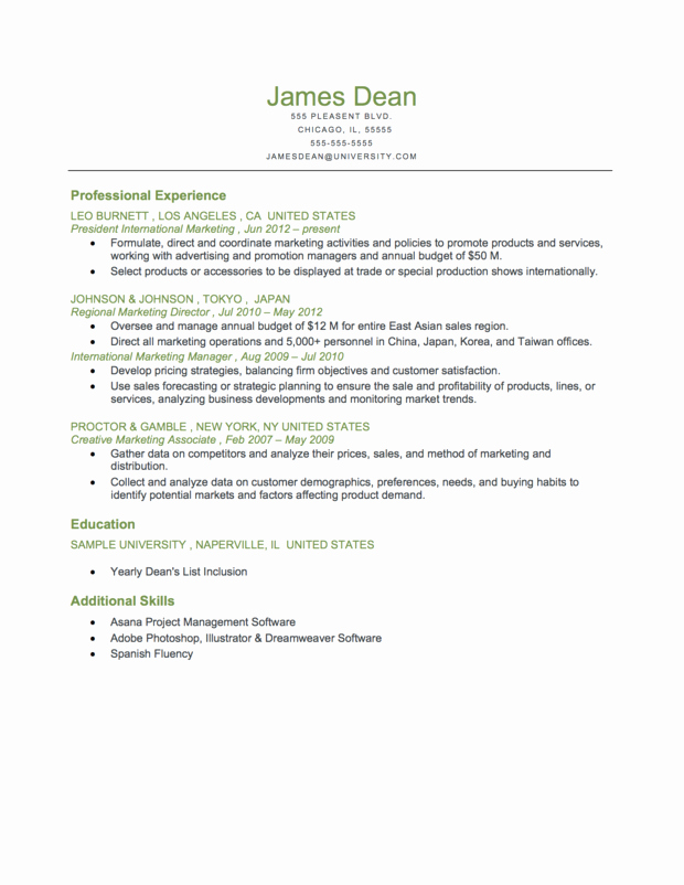 Example Resume Resume format Chronological