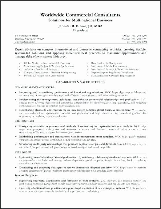 Example Resume Summary Statements