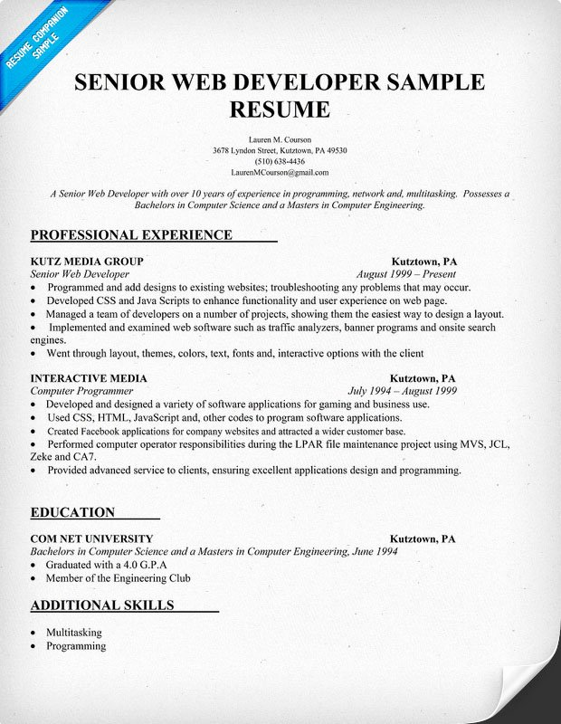 Example Resume Web Developer Resume Example