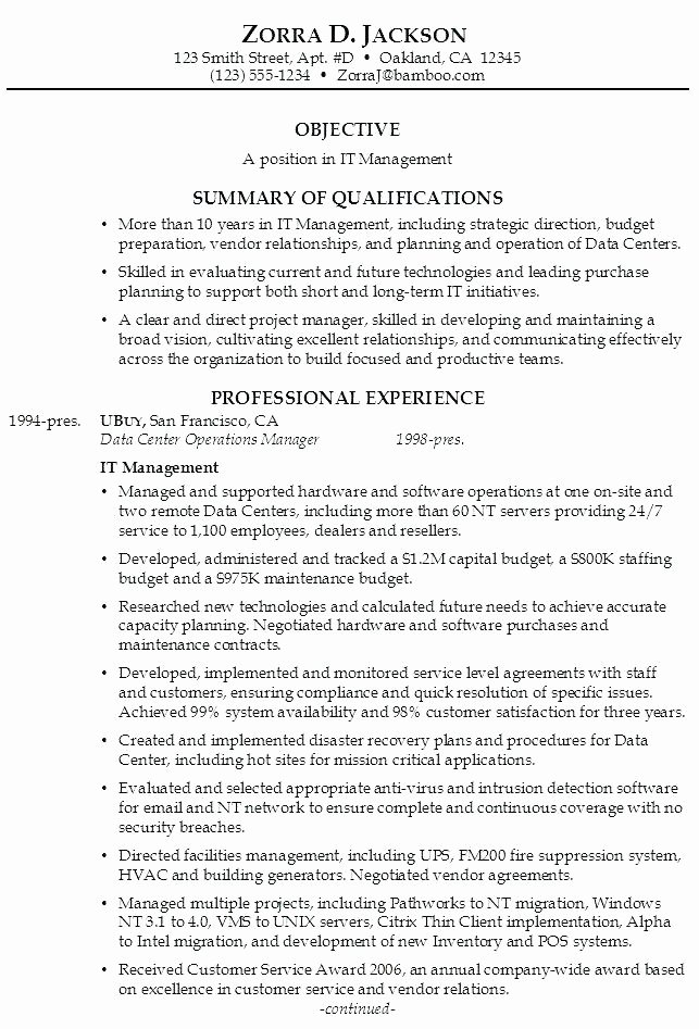 Examples Resume Summary Statement