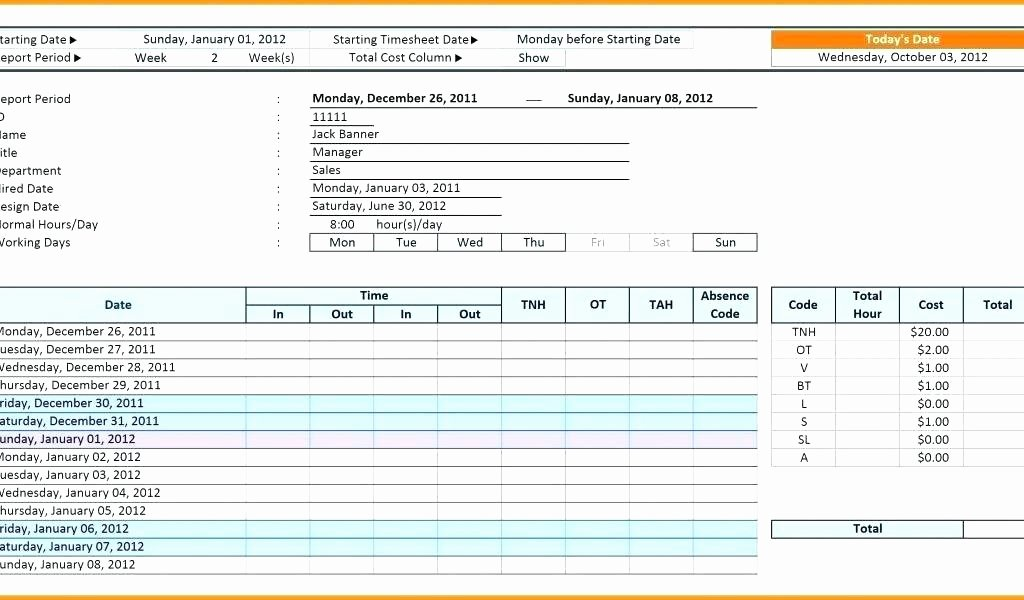 Excel Case Management Template