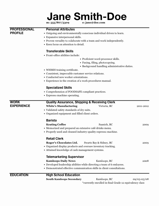 Excel Expert Resume Resume Sample