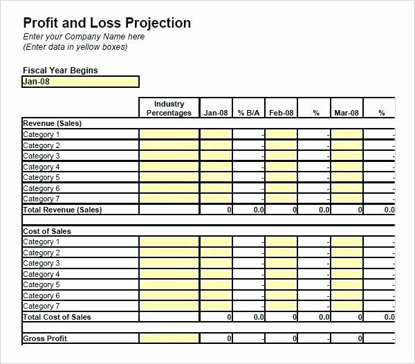 Excel P L Template – Igroonlineub