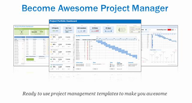 Excel Project & Portfolio Management Templates Download