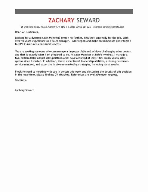 Excellent Customer Service Cover Letter thevillas