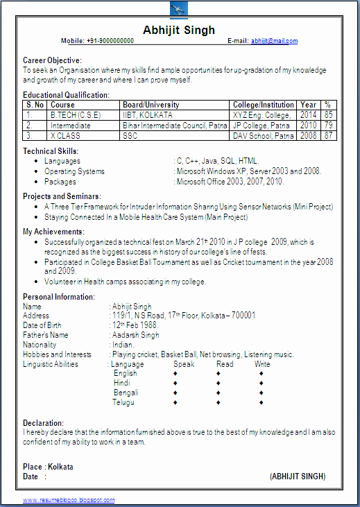 Excellent E Page Resume Sample Of Puter Science