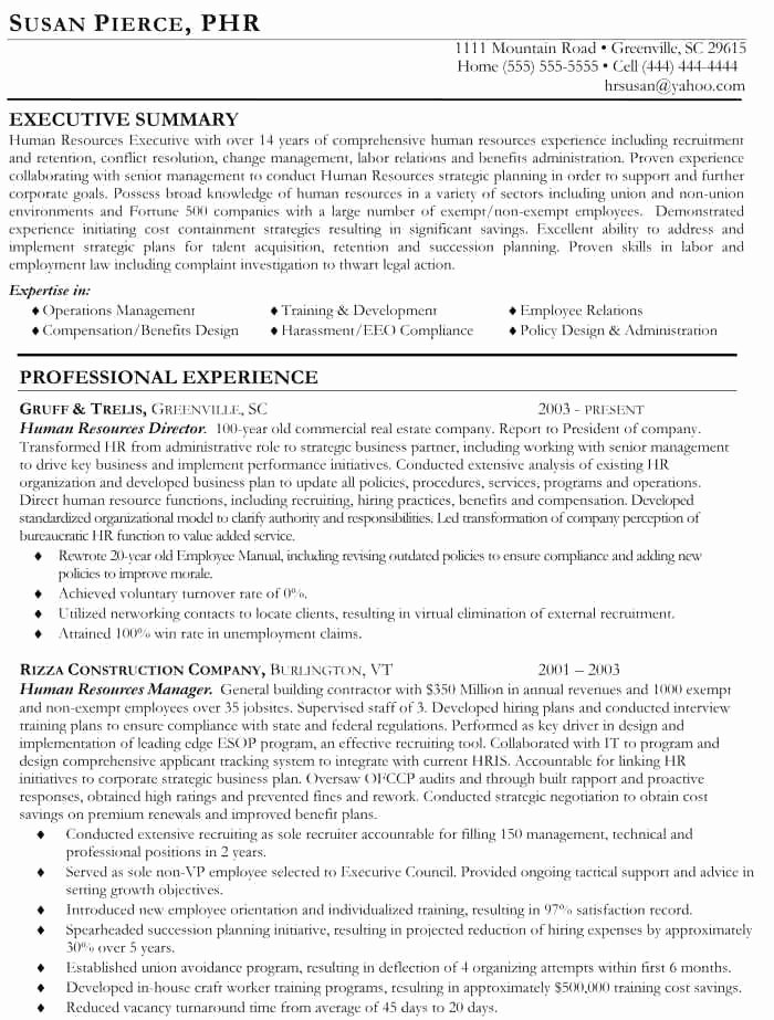 Executive Resume Services Resume Ideas