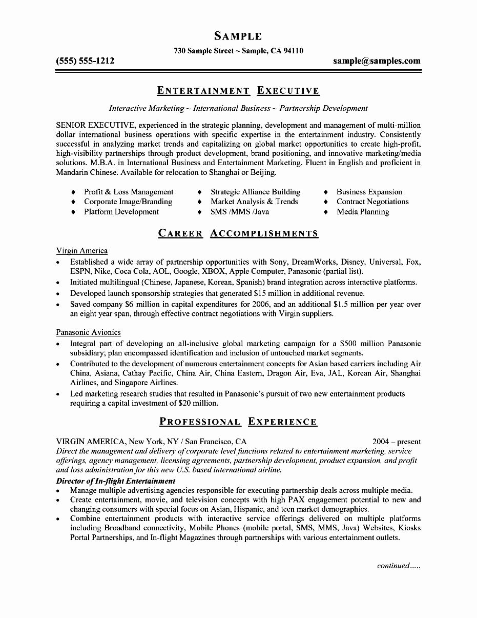 Executive Resume Template Word Free Samples Examples