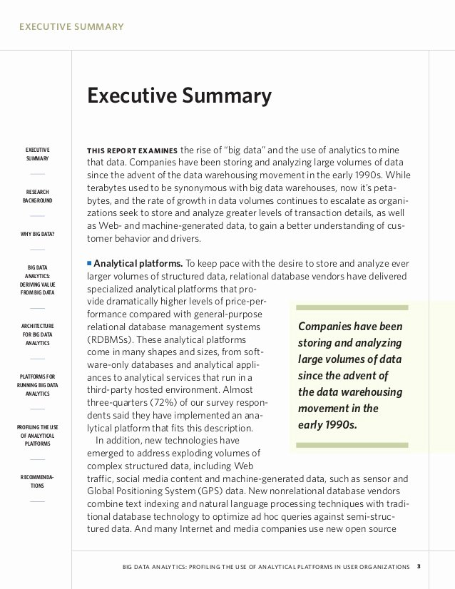 Executive Summary Examples World Maps and Letter