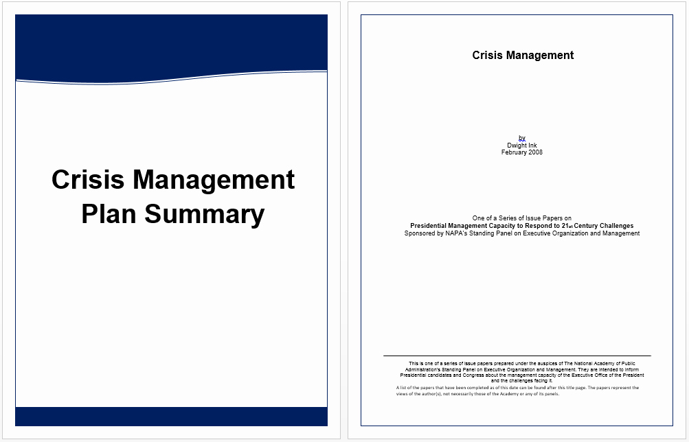 Executive Summary Template for Crisis Management