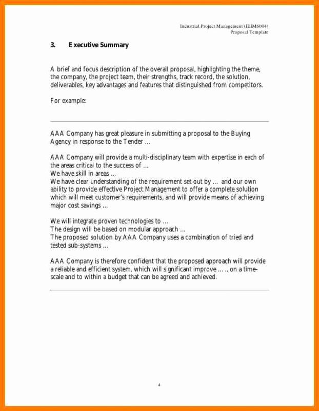 Executive Summary Template for Proposal