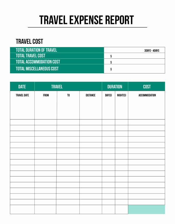 Expense Report Template 11 Free Sample Example format
