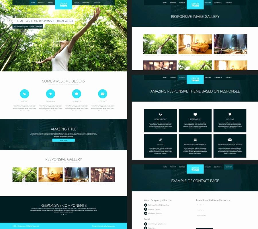 Expression Web 4 Responsive Templates Courier Store
