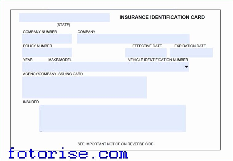 Fake Insurance Card Template