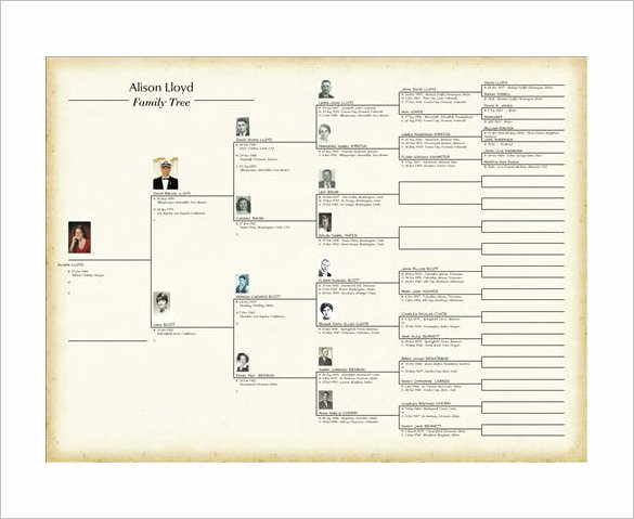 Family Tree Book Template – 9 Free Word Excel Pdf