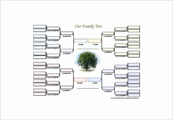 Family Tree Diagram Template 15 Free Word Excel Pdf