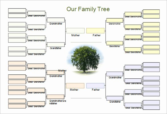 Family Tree Maker Free Template Beautiful Template