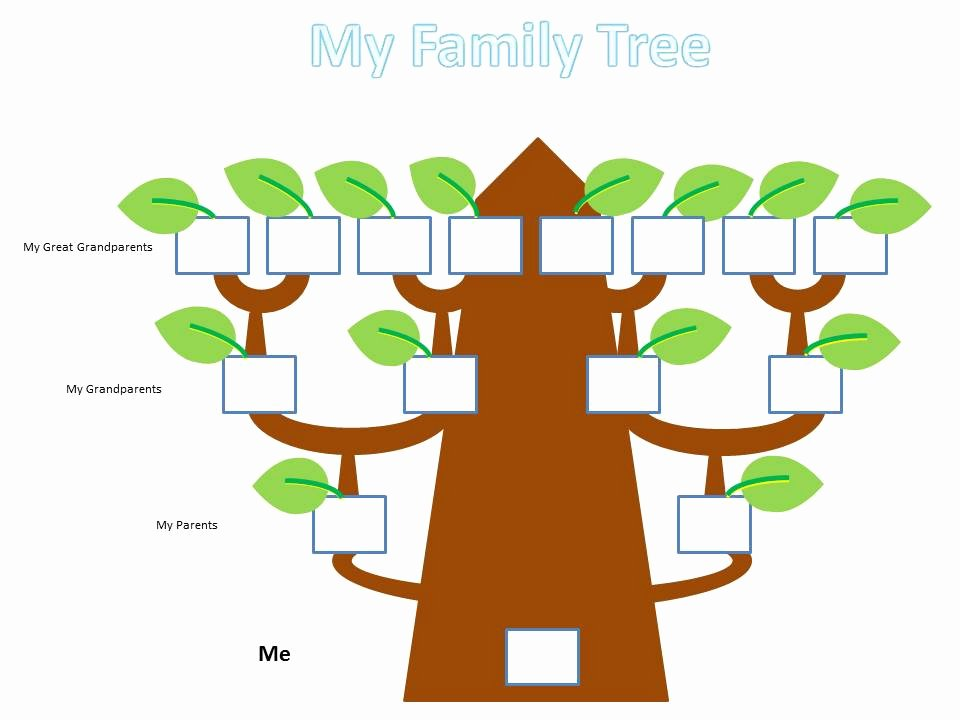 Family Tree Project School Kids 4 to11