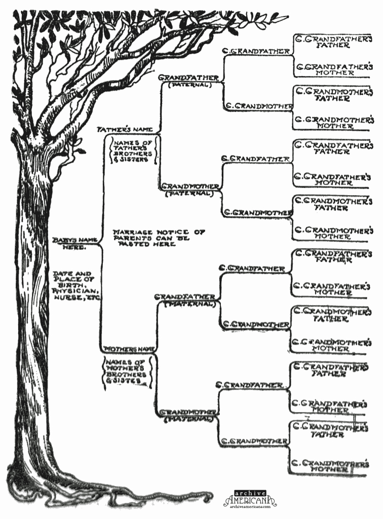 Family Tree Template Family Tree Template E Parent