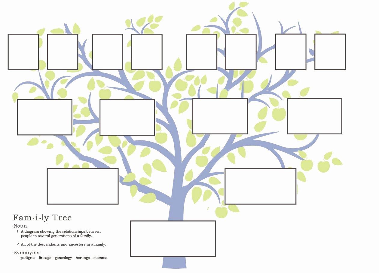 Family Trees On Pinterest