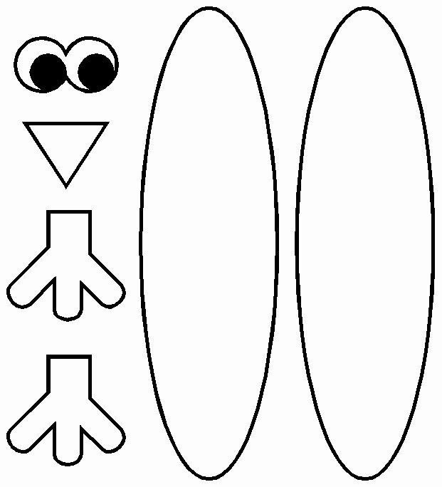 Fan Tail Turkey