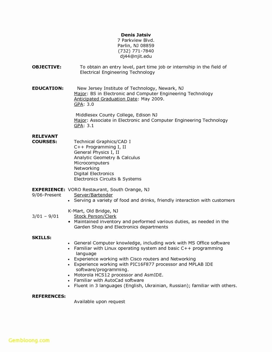 Fancy Professional Resume for High School Graduate