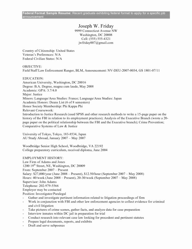 Federal Resume Example Builder Templates Google Work