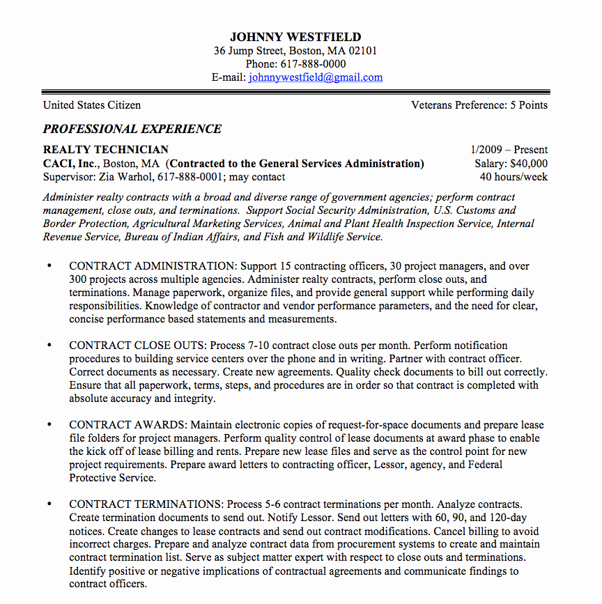 Federal Resume Sample and format the Resume Place