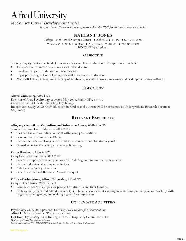 Fice Depot Resume Printing Elegant Resume Paper Fice