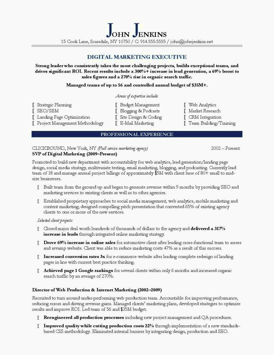 Fill In Blank Resume Template Pdf