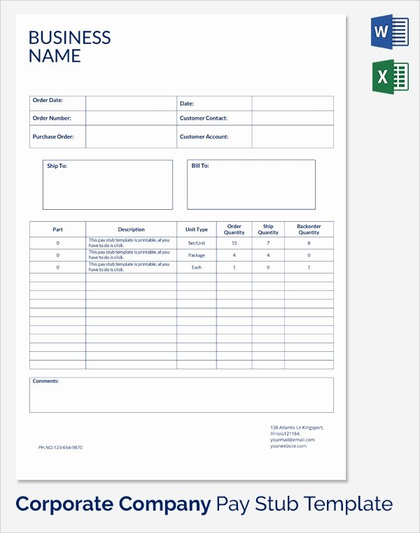 Fillable Pay Stub Template