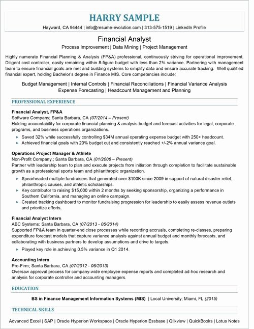 Finance Executive Resume Samples Sarahepps