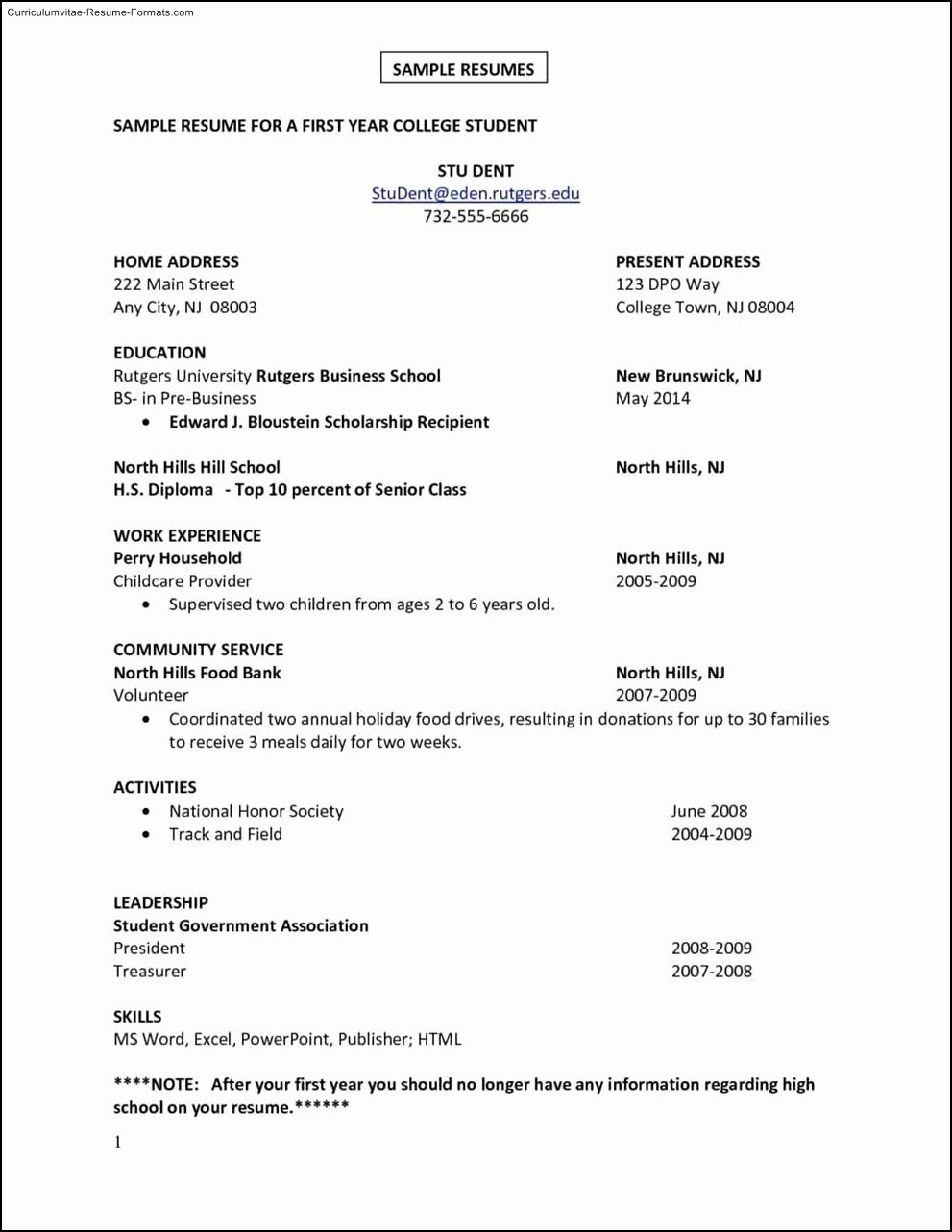 First Job Resume Template Free Samples Examples