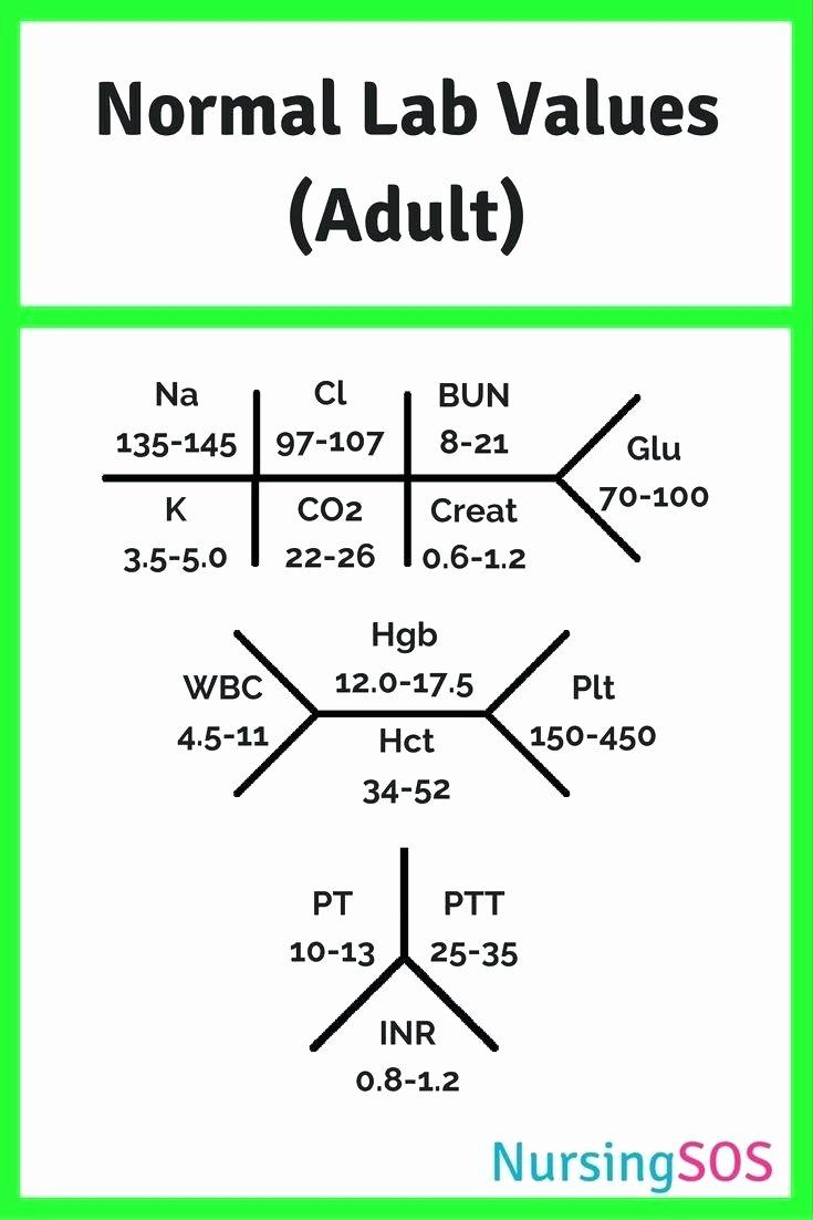 Fishbone Lab Diagram Template Templates Data