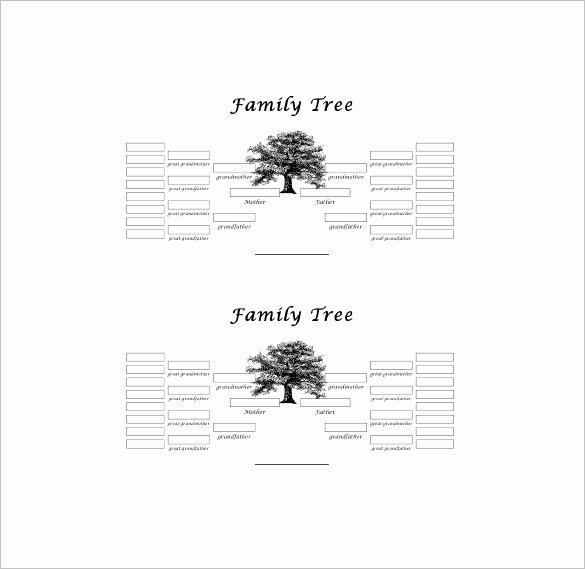 Five Generation Family Tree Template – 11 Free Word