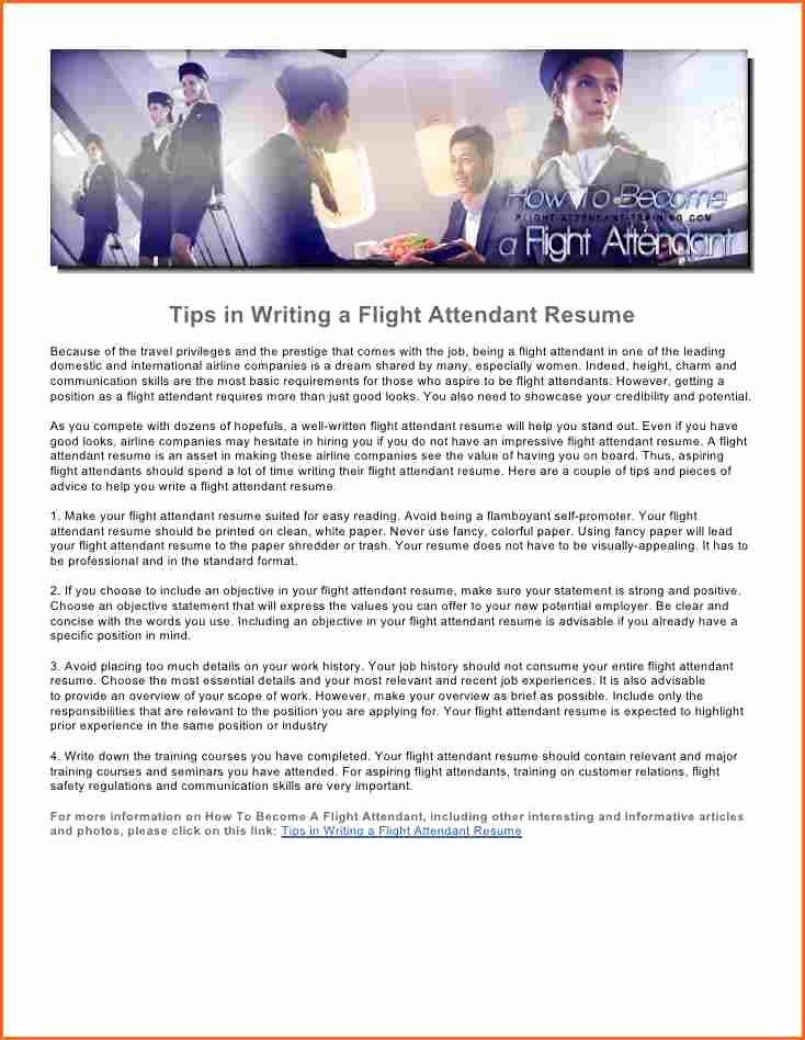 Flight attendant Resume Bud Template Letter