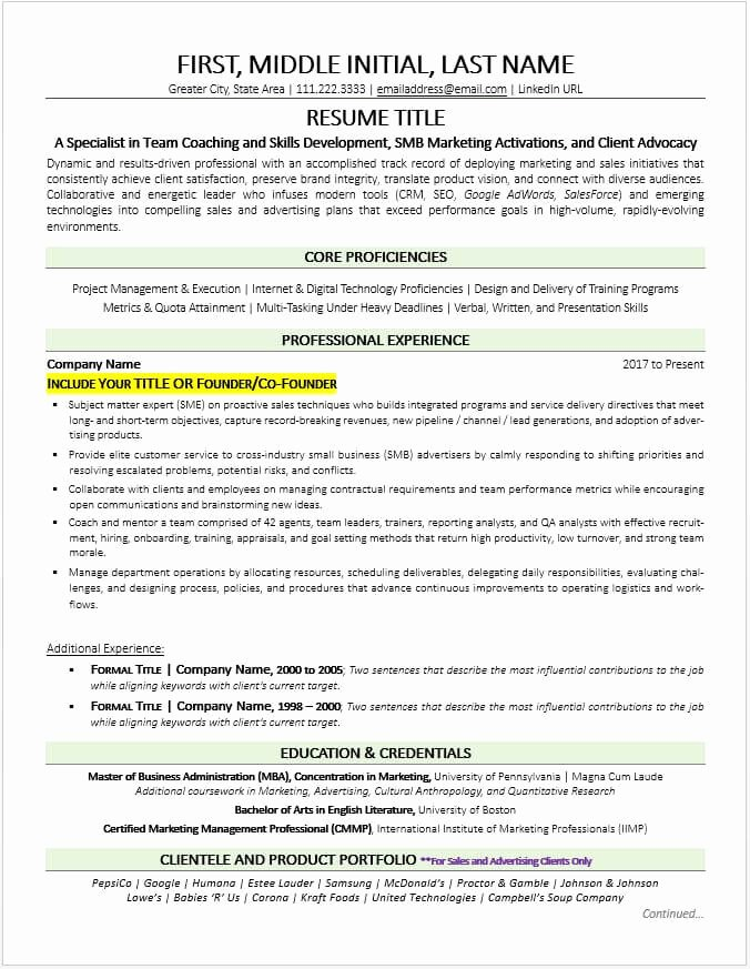 Business Owner Resume Examples Business Owner Resume Latter