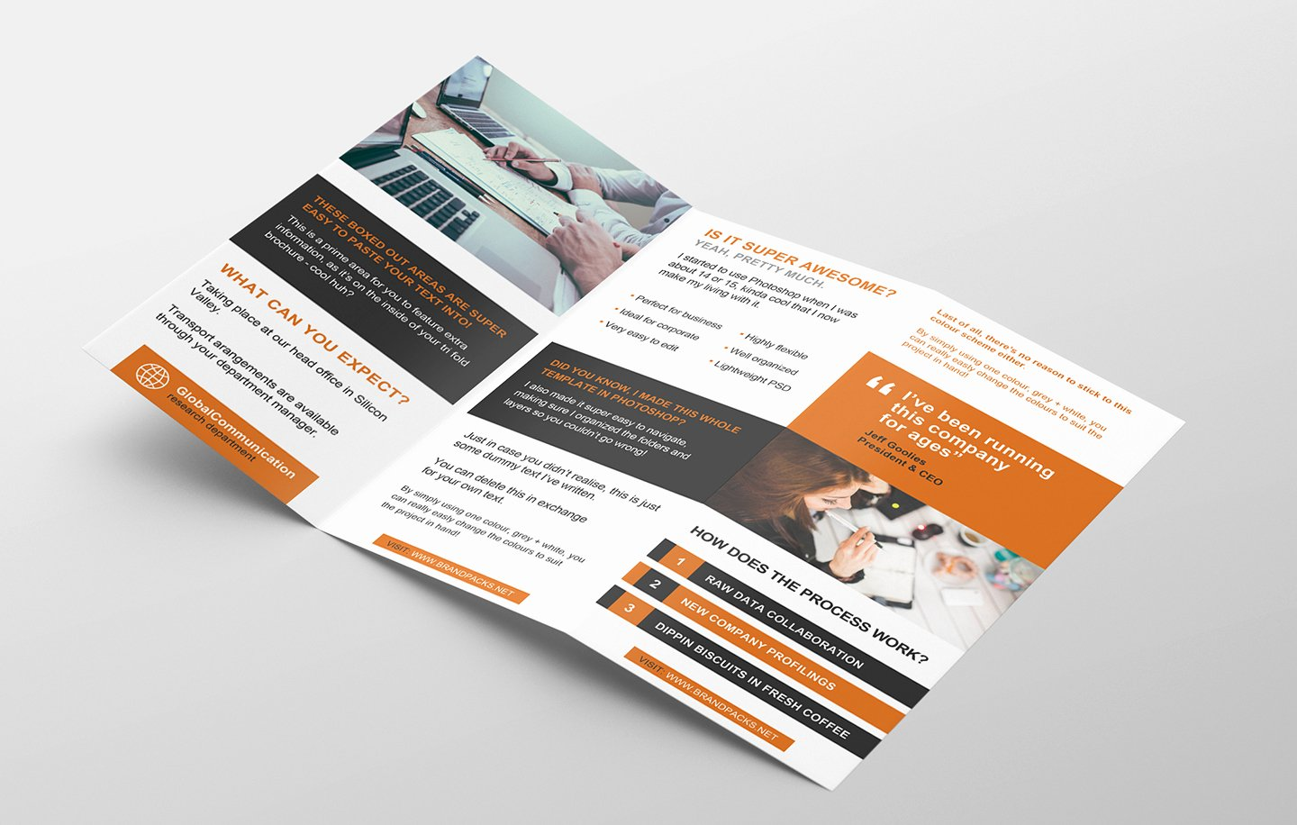 Free 3 Fold Brochure Template for Shop & Illustrator