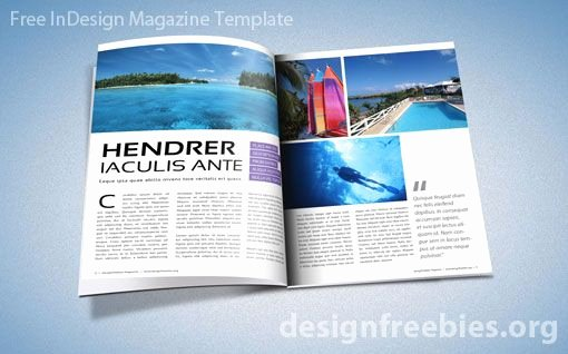 Free Adobe Indesign Magazine Template