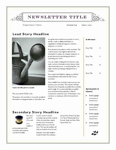 Free Blank Newsletter Template