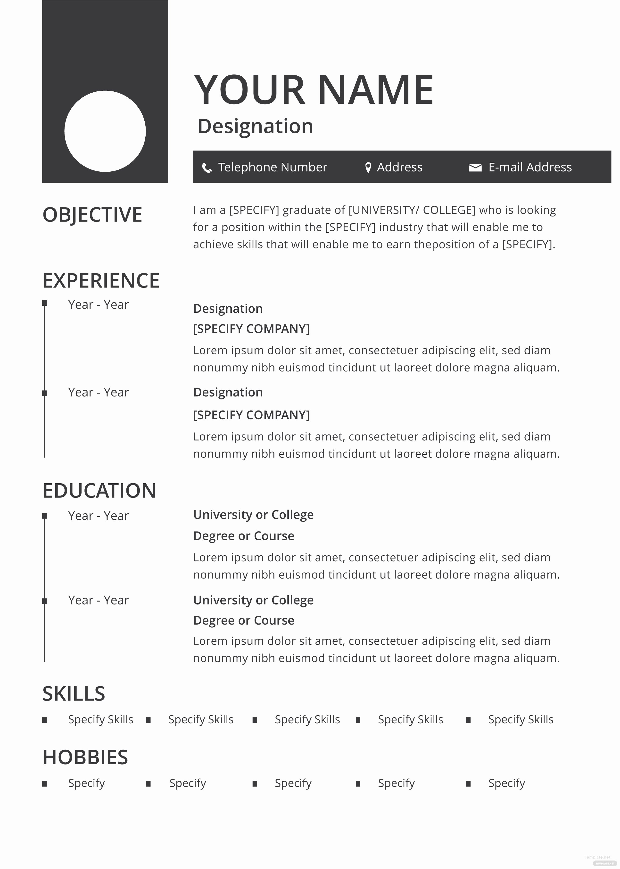 Free Blank Resume and Cv Template In Adobe Shop
