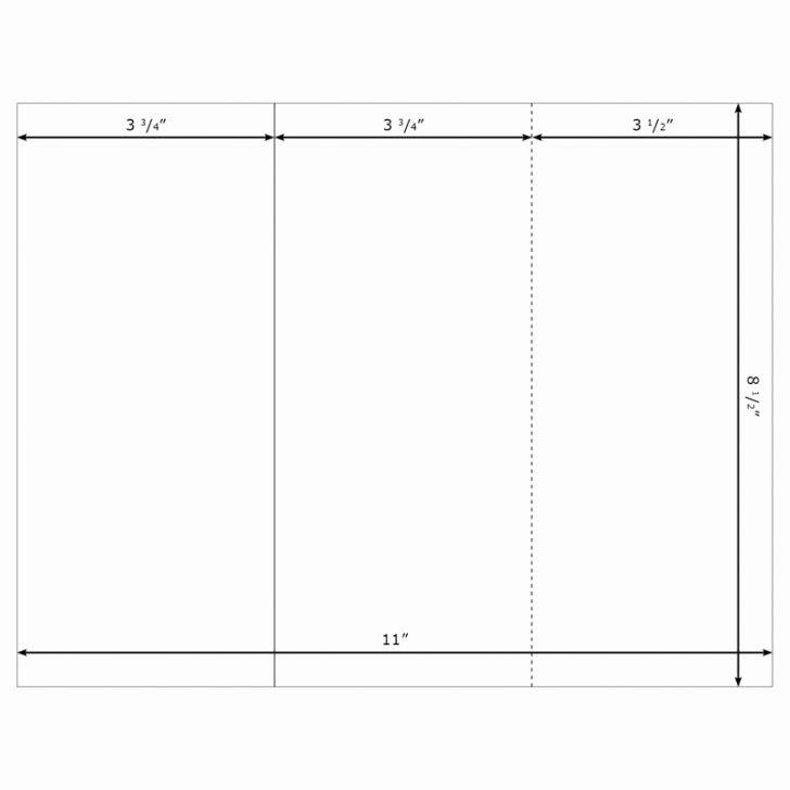 Free Blank Tri Fold Brochure Templates Csoforumfo