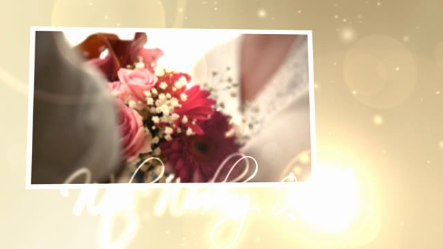 Free Download after Effects Projects Wedding Hearts Cs4