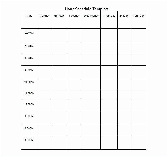Free Download Day Wise Hourly Schedule Template Weekly