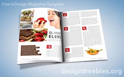 Free Exclusive Adobe Indesign Magazine Template V 2